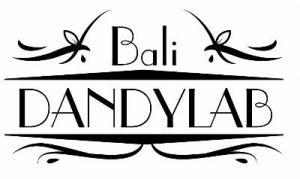 Dandy Lab