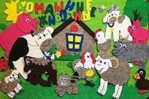 Домашние животные с игровым полем ковролин