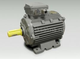 Электродвигатели асинхронные в тропическом исполнении Indukta