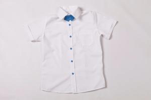 """Коллекция летних рубашек на мальчиков """"Лето, 2017"""""""