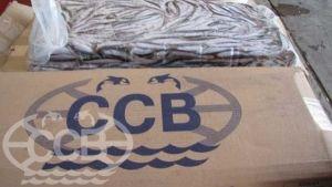 Крымская хамса свежемороженая от 9 см