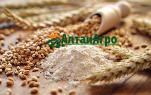 Мука полбы цельно зерновая