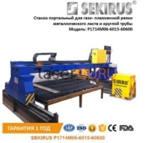 Станок портальный с ЧПУ для газо- плазменной резки металлических листов и круглых труб SEKIRUS P1714M06-6015-60600