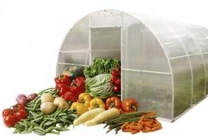 """Пример расчета дозировок """"Фульвогумата"""" и стоимости обработки 1 га для овощей"""