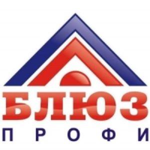 «БЛЮЗ-ПРОФИ»