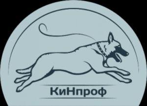 КиНпроф