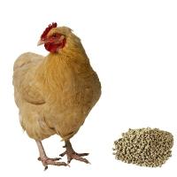 Комбикорм для кур-несушек от 48-и недель ПК-1-1, 40 кг