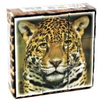 Новинка: пластмассовые кубики с картинками-фотографиями